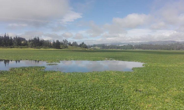 Contaminación y problemática socio-ambiental en Tuta (Boyacá