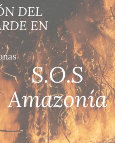 #PRAYFORAMAZONAS SOS