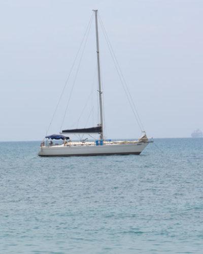 DEVOLVIENDO FAVORES A NUESTROS MARES Y SU BIODIVERSIDAD (Día del Mar y la Riqueza Pesquera)