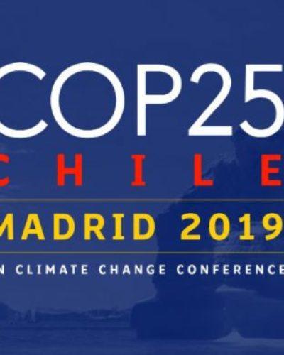 EL ROL DE AMÉRICA LATINA EN LA COP25