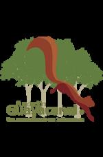 Fundación Guayacanal